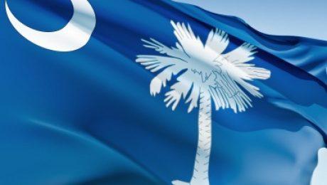 The state flag of South Carolina